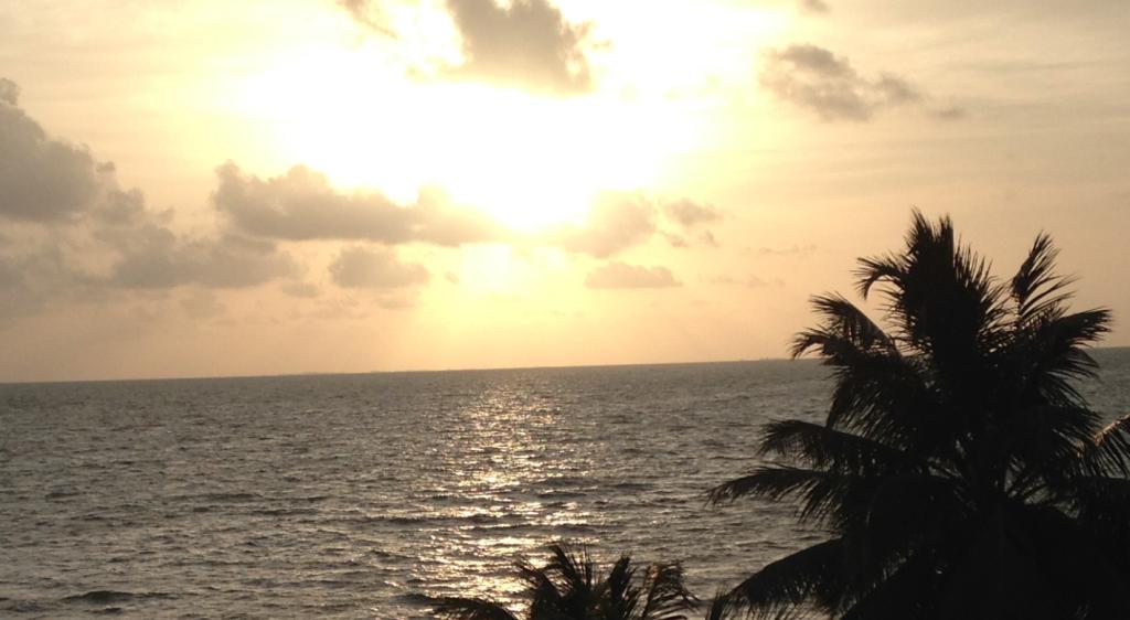 sunrise hopkins